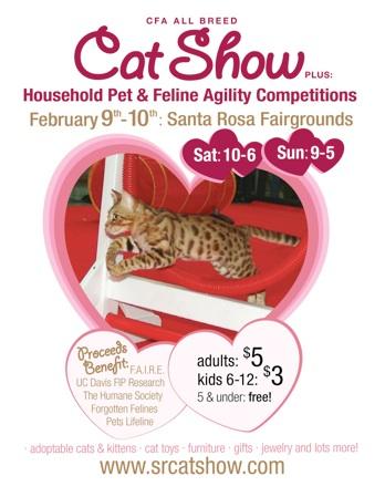 Santa Rosa Cat Show